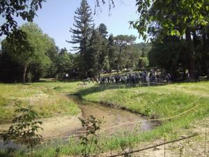 La Mérentaise à Gif sur Yvette aux abords du CNRS avec les visiteurs 2014-06-24