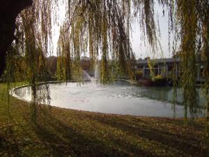 Site de production de Morsang sur Seine Jet d'eau - © Jean-Marier CORBIN 2014-11-23