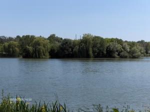 Bassin du Carouge en 2006 2