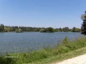Bassin du Carouge en 2006