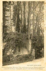 3. SSO R MORSANG CH DAVOUT-ORGE a1903