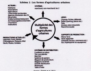 morangis-site-mgp-agriculture-1